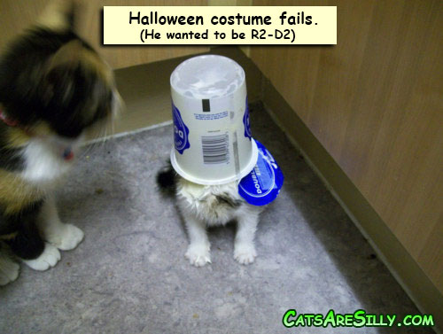 Halloween costume fail. He wanted to be R2-D2